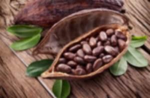 Wo Kann Man Fimo Kaufen : wo kann man kakaonibs kaufen ~ Lizthompson.info Haus und Dekorationen