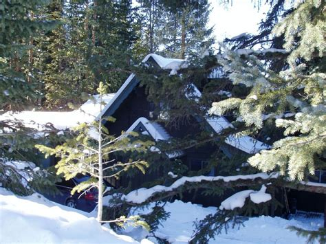 Haus Kaufen Rocky Mountains Usa by Forest Haus A True Rocky Mountain Vacati Vrbo