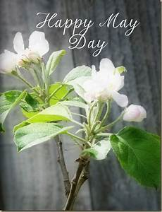 Happy May Day Flowers Image