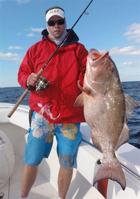 grouper fishing fish biggest record catches largest fishes bottom giant igfa international ocean florida epinephelus morio sea hudson ko monster