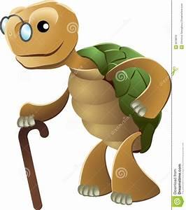 Clipart Of Elderly Tortoise Stock Vector - Image: 6518818