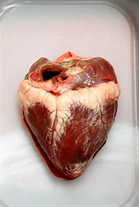 1000+ images about Hearts on Pinterest