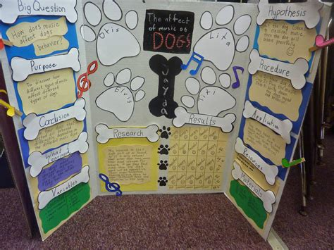 4th Grade Science Projects Examples Bing Images