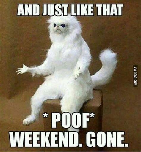 Happy Monday Meme - 20 happy monday memes skinny ninja mom