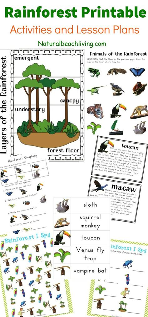 the best rainforest printable activities for