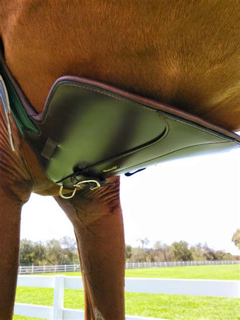 belly horse guard amerigo leather girth stud short tack