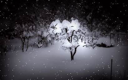 Winter Animated Scene Night Neve Screensaver Snow