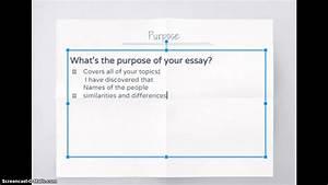 Introduction Paragraph  Compare  Contrast Essay