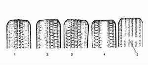 Tire Wear Pattern Chart