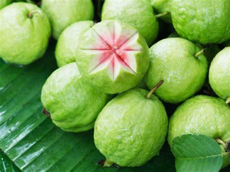 guava  healthy fruit  diabetics boldskycom