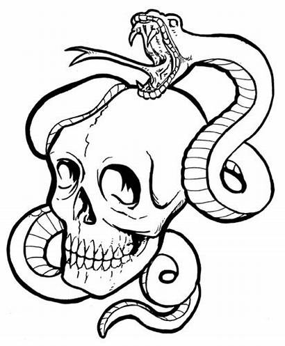 Tattoo Snake Skull Drawings Drawing Dibujosa Rattlesnake