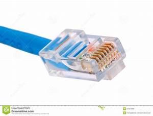 Lan Connector Stock Image  Image Of Clip  Jack  Macro