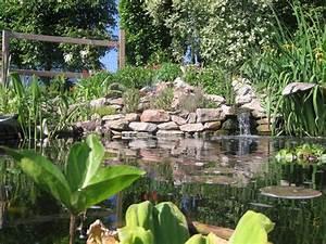 bassin de jardin naturel homeezy With delightful amenagement jardin exterieur mediterraneen 11 bassin de jardin
