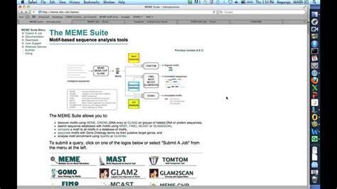 Meme Motif Search - denovo motif search using meme youtube