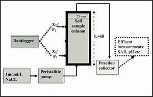 Schematic Diagram For Pressure Leaching Experiment For