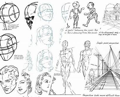 Draw Loomis Drawing Human Perspective Learning Learn