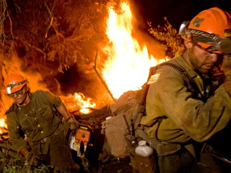 Study: West faces frightening wildfire deficit Forest