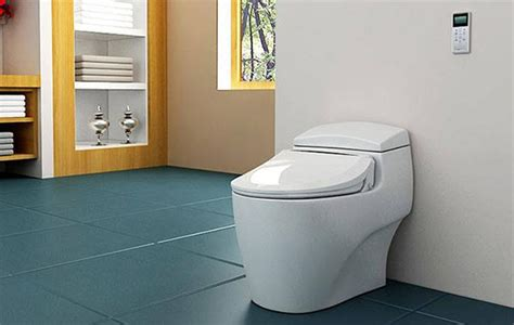 How Much Does A Bidet Toilet Cost - what does it cost to install a bidet bidet org