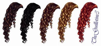 Curly Hair Brown Curls Clipart Curl Deviantart