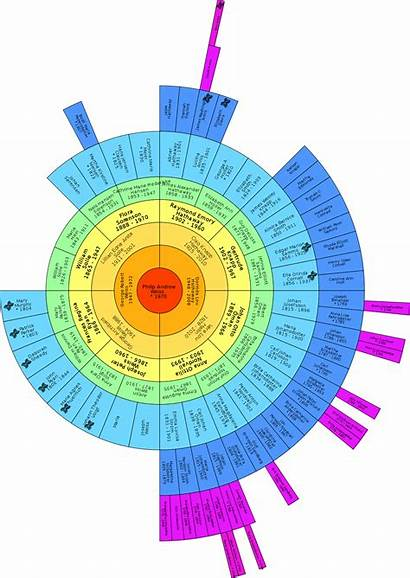 Dna Tree Matches Matching Chart Fan Genealogy