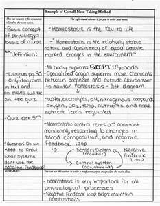 volcano facts homework help creative writing on self discovery phd writing service usa