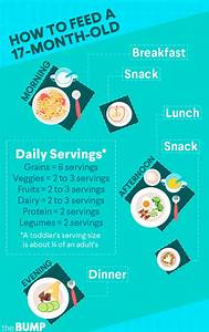 Feeding Chart For 3 Month Old Baby 17 Month Old Development Milestones Toddler Month By Month
