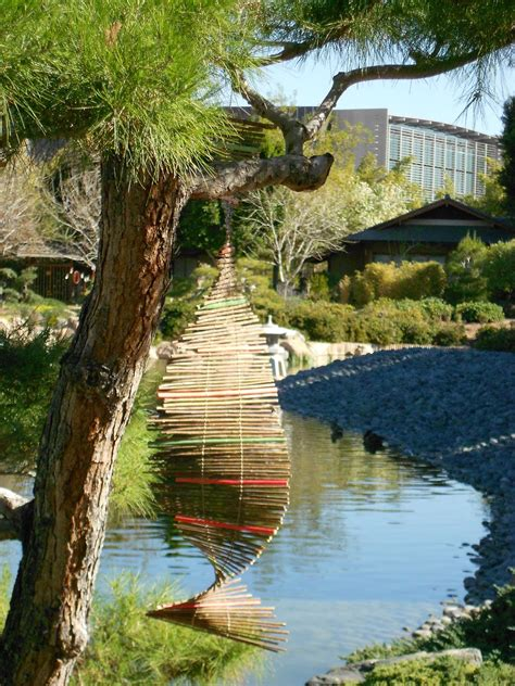Ikebana Desert Japanese Friendship Garden