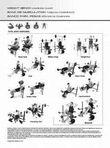 Golds Gym Workout Chart Pdf | EOUA Blog
