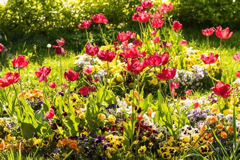 Blumen Im Garten Pflanzen » Schöne Ideen Für Frühling & Sommer
