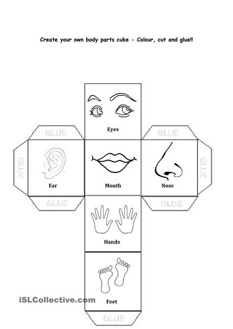 body parts egitim