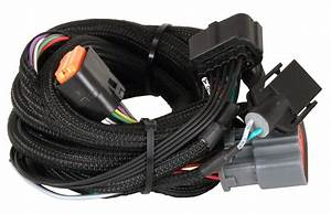 Msd 2774 Trans Controller Ford Harness 4r100  1998-up
