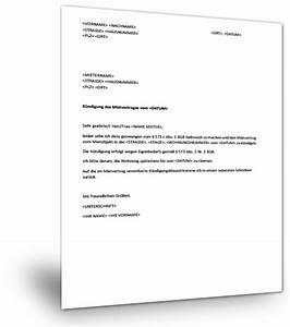 Mietvertrag Vorlage 2015 : k ndigung vermieter muster muster k ndigung mietvertrag vermieter k ndigung vorlage k ndigung ~ Eleganceandgraceweddings.com Haus und Dekorationen