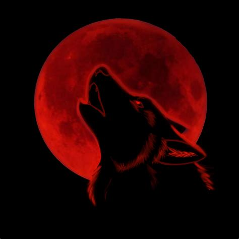 Alpha Wolf Blood Moon Wolf Wallpaper by Pin By Engstrom On Blood Moon Wolves