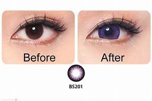 Geo Bella Violet WBS-201 | Contacts Cow