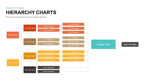 hierarchy template hierarchy chart template for powerpoint and keynote slidebazaar