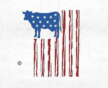 Flag Svg Cow American Farm Animal Country