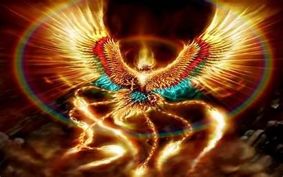 Fantasy Desktop Wallpapers Backgrounds Phoenix Dragon Pc