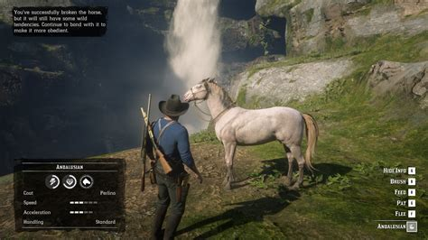 perlino andalusian horse found while looking comments legendary moose such pretty