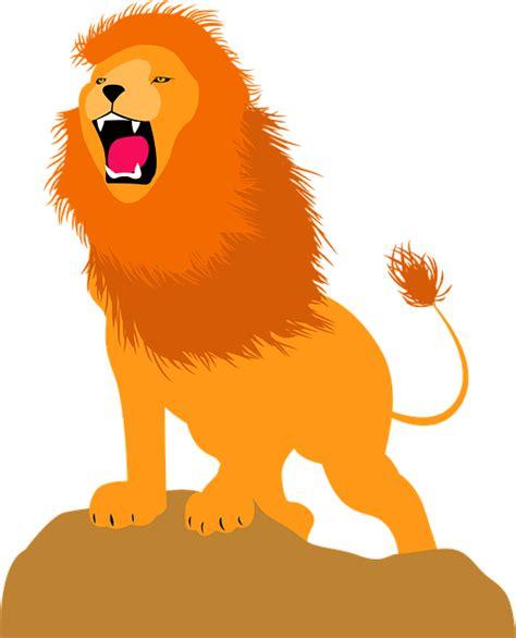 photo africa animal leon zoo jungle predator feline