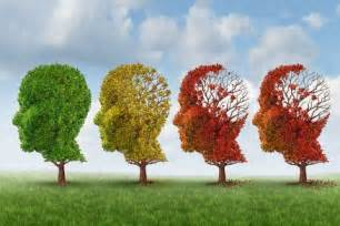 keck school of medicine establishes usc alzheimer s therapeutic research institute usc news