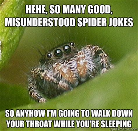 Spider Meme - hehe so many good misunderstood spider jokes so anyhow i m going to walk down your throat