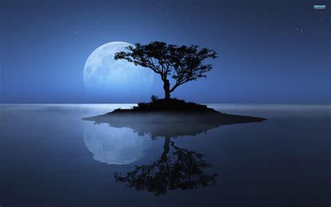 Blue Tree Wallpaper by The Blue Moon Hd Wallpapers Pixelstalk Net