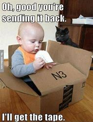 Funny Cats and Babies Memes