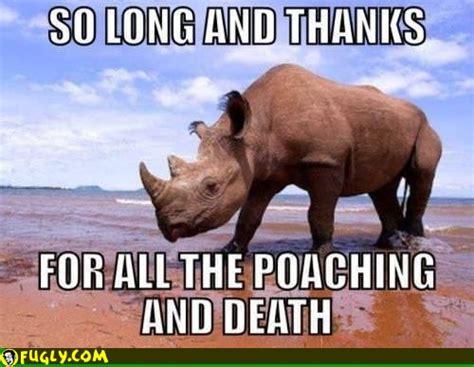 Rhino Memes - western black rhino memes