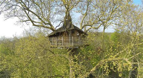 chambre d hote 22 cabane nid d 39 aigle