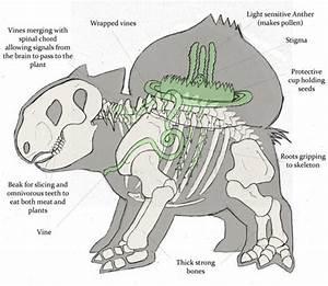 Anatomía de un Bulbasaur – PixFans