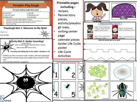 preschool spider theme resource 384 | spider theme product preview 1