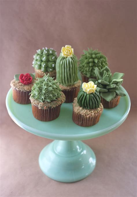adorable cupcakes shaped  tiny cacti  succulents