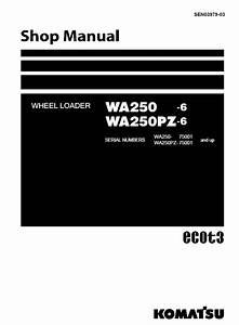 Komatsu Wa250