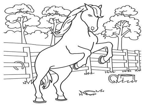 coloring pages for 6th graders coloring home